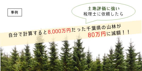 土地評価に強い税理士に相談したら、自分で計算すると8,000万円だった千葉県の山林が80万円に減額した事例