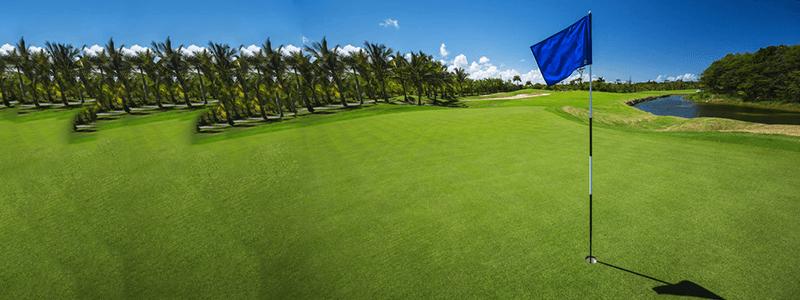 golf-evaluation