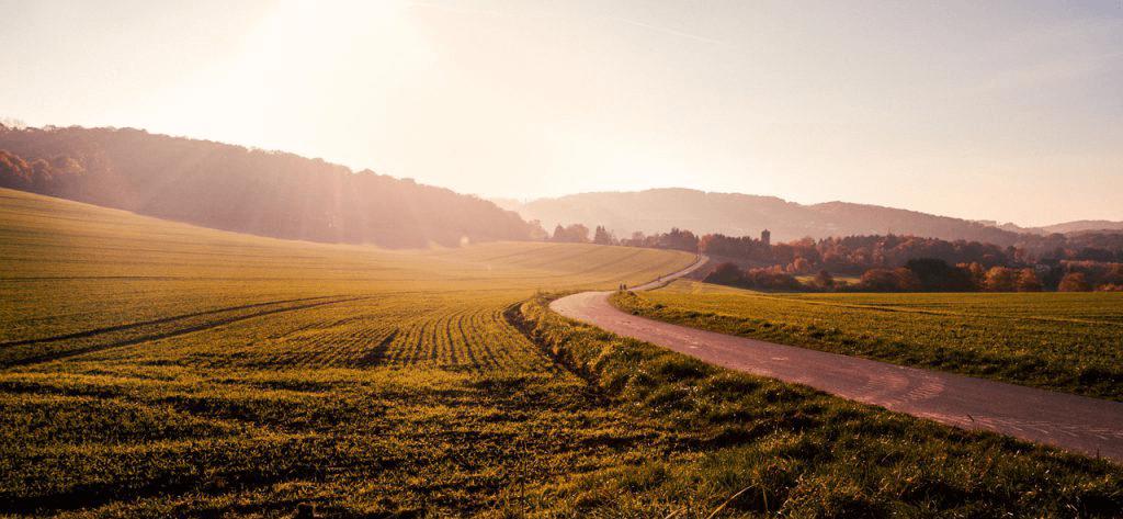 農地相続の手続きと相続税評価について徹底解説