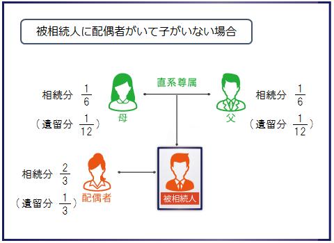 被相続人に配偶者がいて子がいない場合の相続分と遺留分